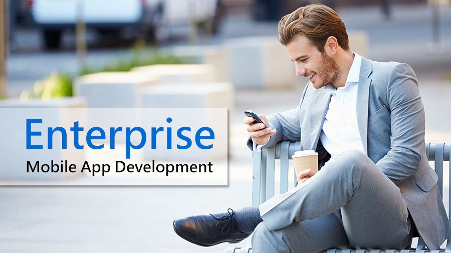 Enterprise-Mobile-App-Development