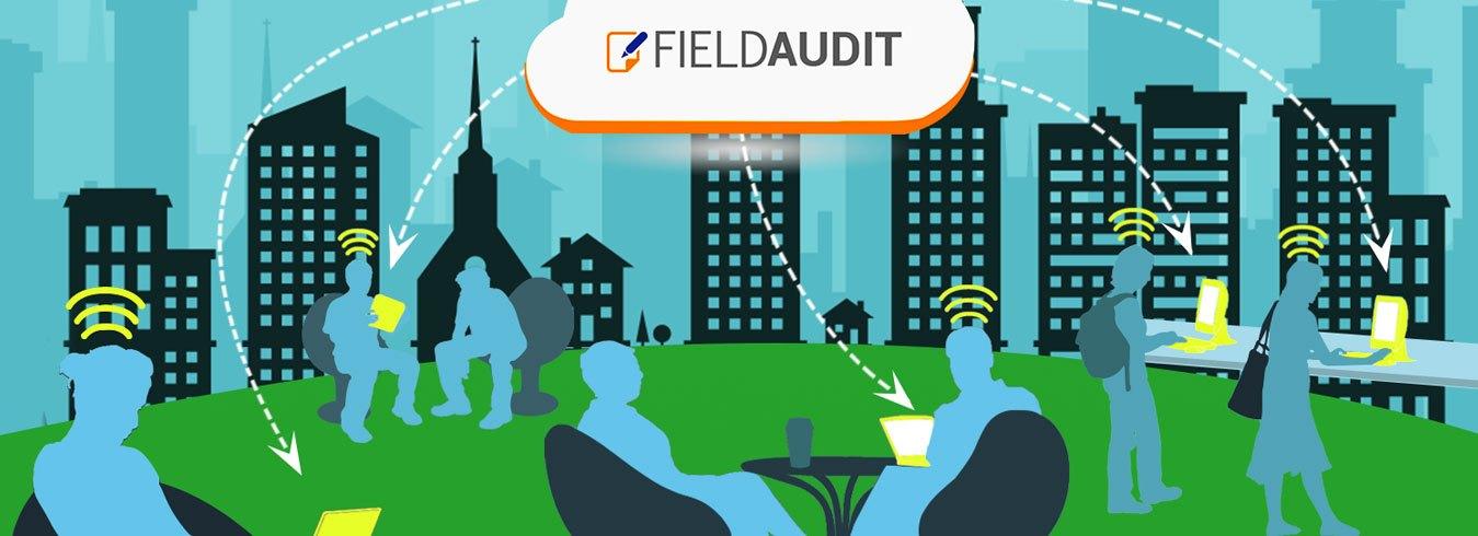 Field-Audit-1500x1500