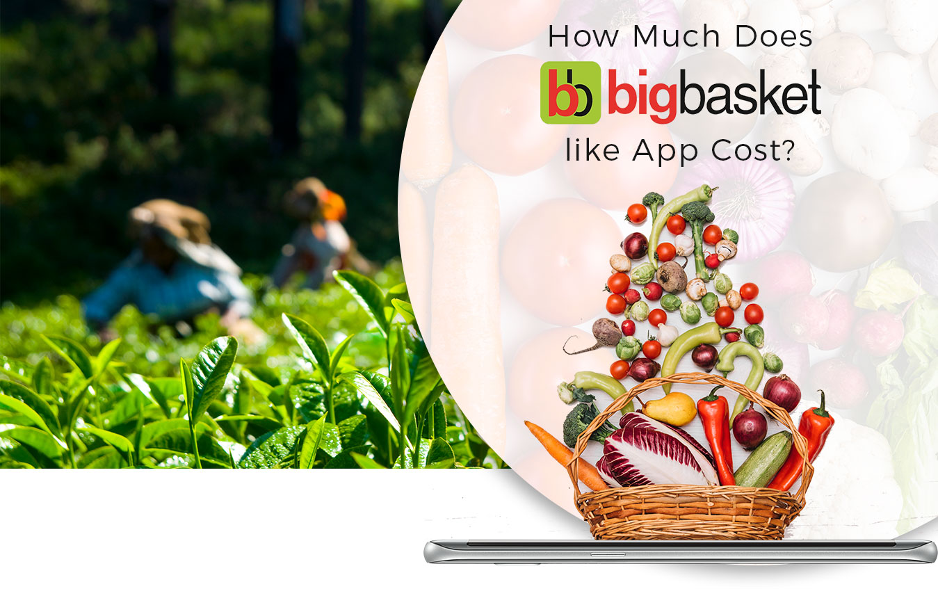 How Much Does it Cost to Develop an App like Big-basket